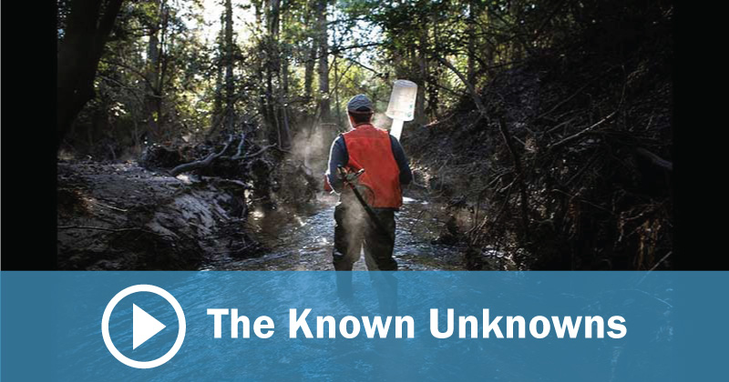 The Known Unknowns From Endeavors