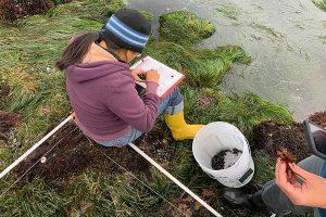 Female doing field work